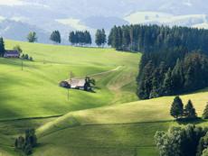 Schwarzwald Hügel