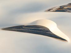 lençóis maranhenses - lagunen aus der Luft