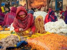 Flower Market Delhi