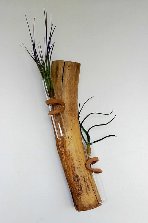 Branch Test Tube
