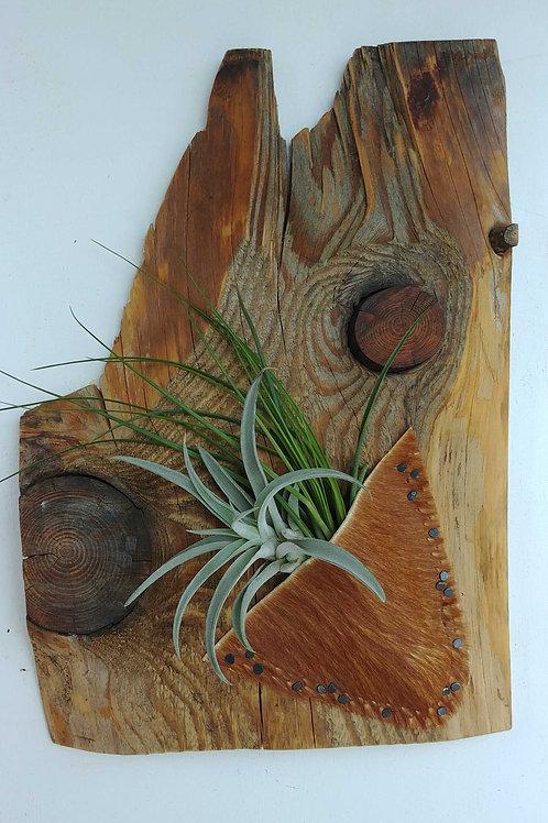 Hide on Wood