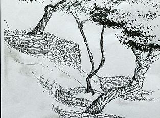 Bäume und Steine.jpeg
