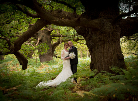 Mandy and Steve's Autumn Wedding, Wantisden Valley