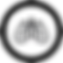 Video-Round-Icon 4 3 2 2 2 2.png