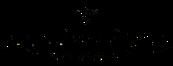Soundmedicine-Logo.png