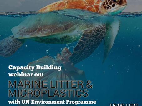 Consultation with UNEP on Marine Litter & Mirco-plastics