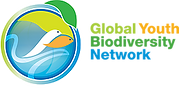 Logo_GYBN_Horizontal-Small.webp