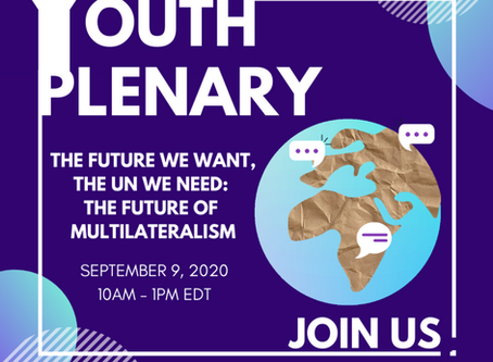 Information regarding the UN75 Youth Plenary