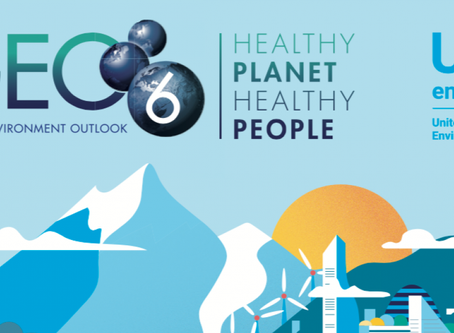 Youth inputs to Future of Global Environmental Outlook (GEO) process - send a submission now!!