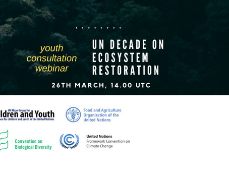 Youth-led UN Inter-agency webinar on Ecosystem Restoration Decade