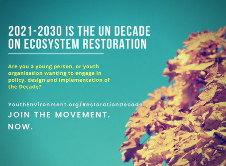 Youth portal for UN Decade on Ecosystem Restoration is now online!