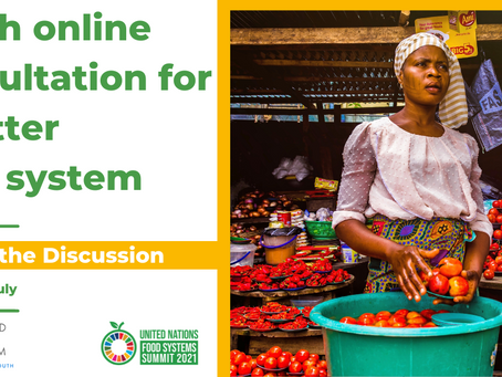 Updates on the UN Food Systems Summit & Pre-Summit - Youth Engagement