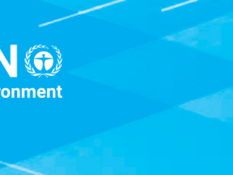 Updated Roadmap for the UN Environment Programme Governing Bodies for Jan 2021 - Feb 2022