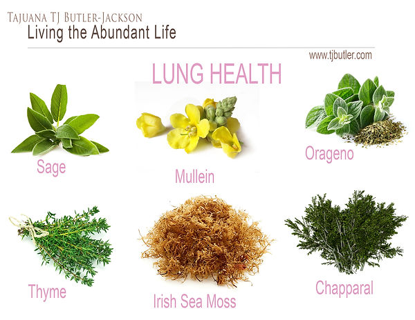 Lung Herbs.jpg