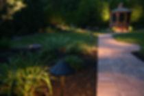backyard nightscaping.jpg