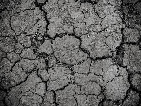 The struggle with drought continues
