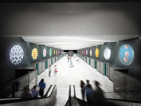 Visuals of Metro D stations revealed