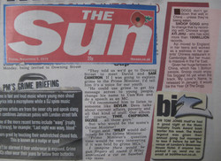 Sun Newspaper Biz Section