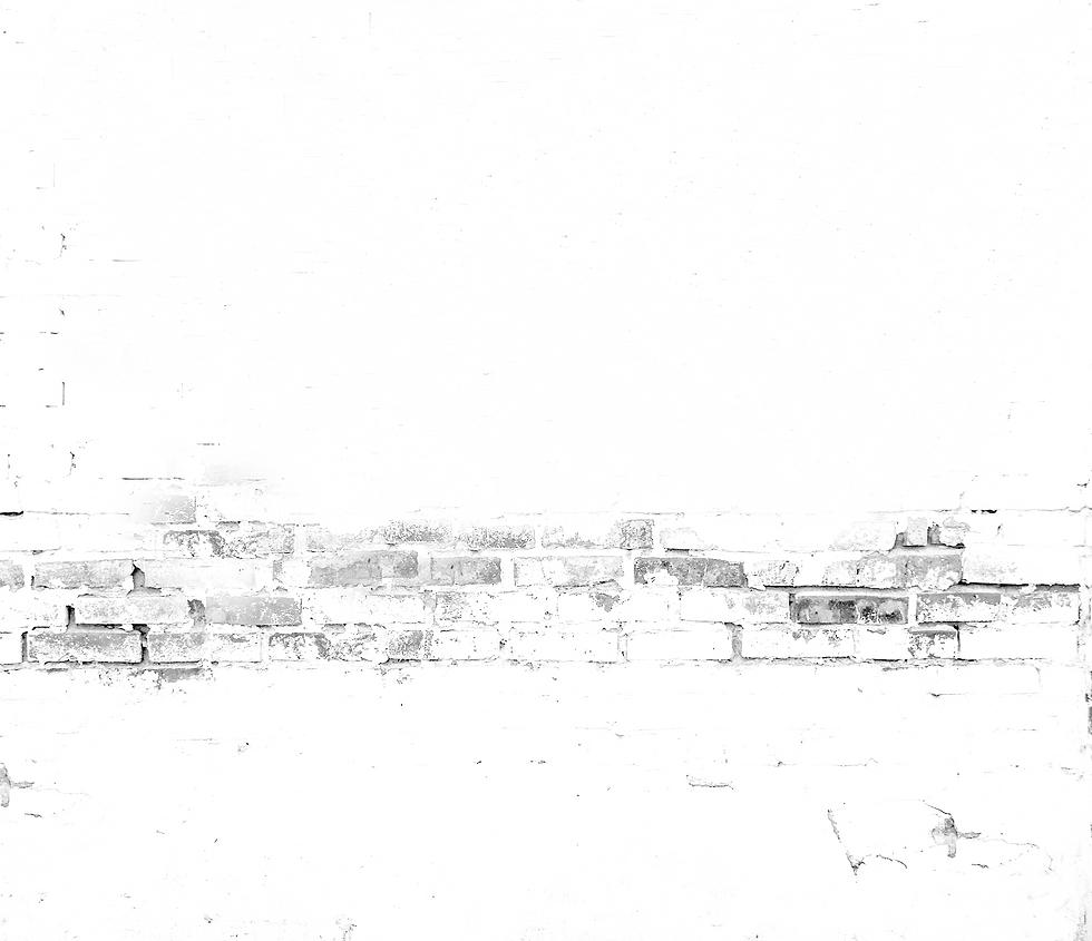 White Brick - BW2.png