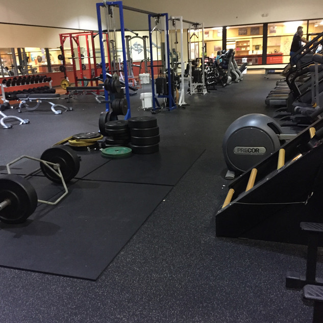 Cardio and Free-Weight Area