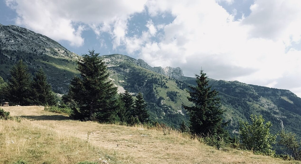 paysages-vercors-dog-trotteuse.JPG