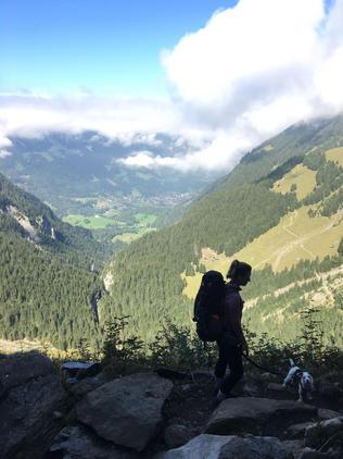 dog-trotteuse-suisse.JPG