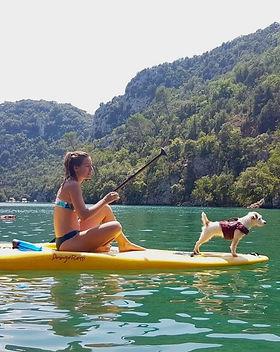 cani-paddle-dog-trotteuse.jpg