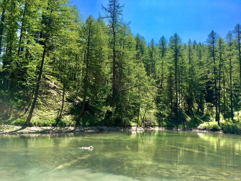 lac-montagne-queyras.jpg