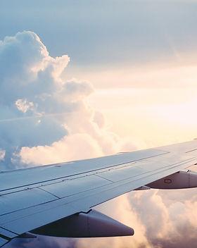 avion-slovenie-dog-trotteuse.jpg