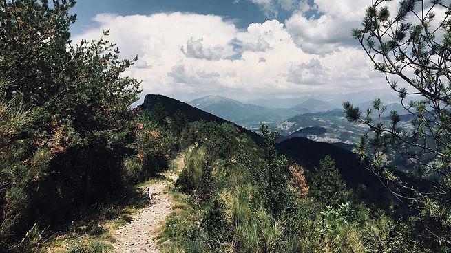 vercors-dog-trotteuse-road-trip.JPG