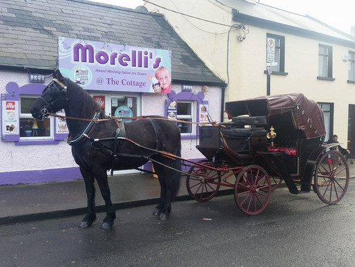 North County Carriages, Balbriggan man expanding Horse & Carriage business.