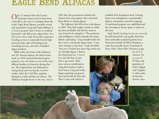 WORKING TO BE... Kentucky's Primer Alpaca Farm:  EAGLE BEND ALPACAS