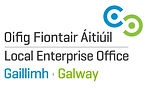 Galway LEO (1).jpg