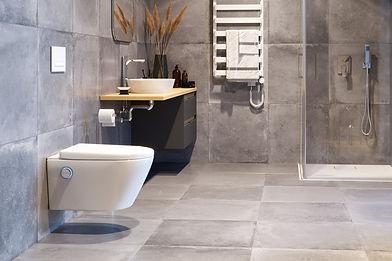 toaleta-myjaca-dakota_d1_.jpg
