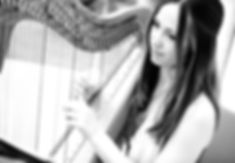 wedding harpist Susan Lambert performing for Iggesund Corporate Event
