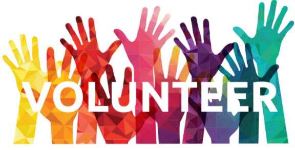 volunteer pic.PNG