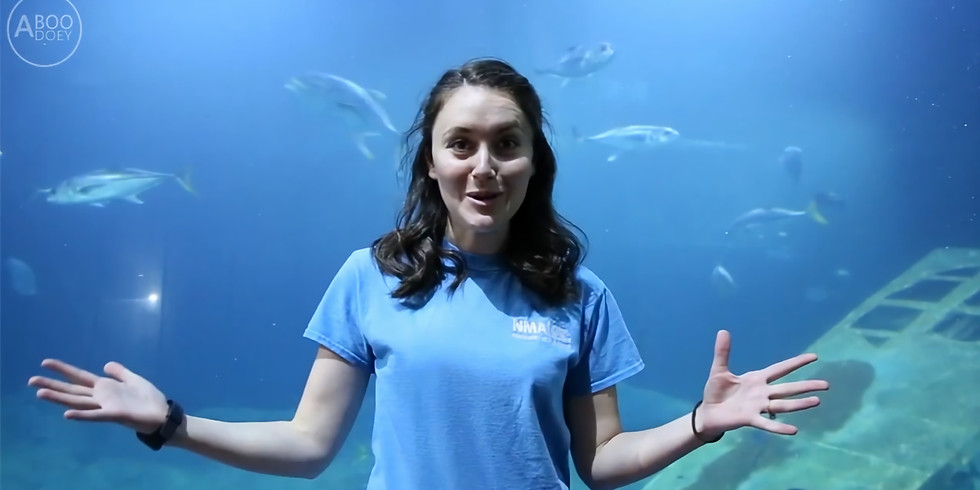 Virtual Tour - National Marine Aquarium