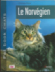 mon male brown importé de Norvége au paradis maintenant et qui me manque toujours