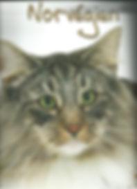 calendrier Artemis 2011, photo C.Hermeline