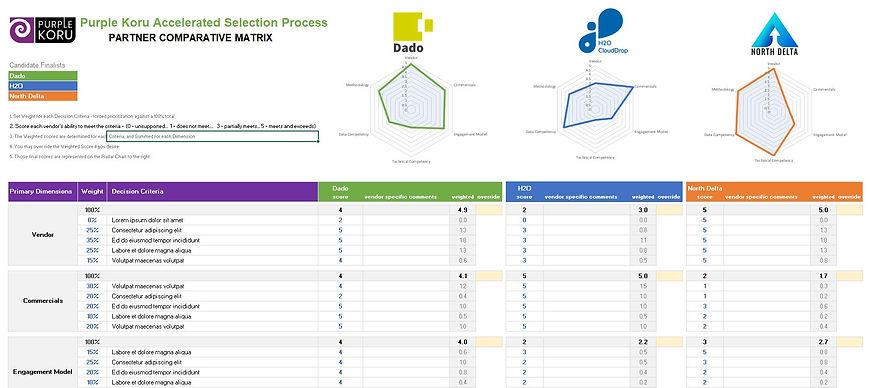 Vendor Selection Matrix Graphic.JPG