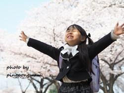 桜と一緒に入学祝い