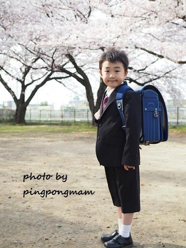 桜と一緒にロケーションフォト♡│入学記念│さいたま市