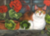 CAT WITH GERANIUMS.png