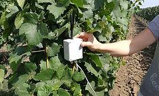 Agritech, soil sensing, AI