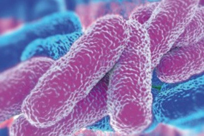 Legionella Risk Monitoring