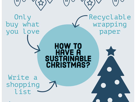 SWUB's Advice for a Sustainable Christmas