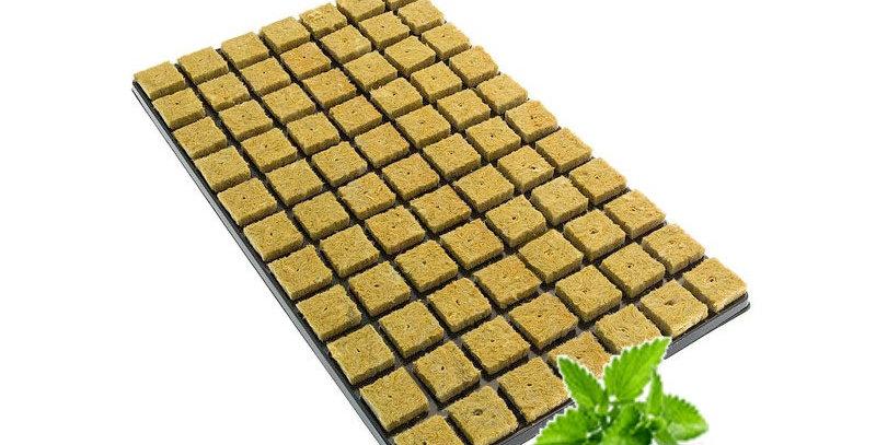 GRODAN ROCKWOOL 77 CUBE PROPAGATION CLONING TRAY FOR HYDROPONICS PLANT GROWING