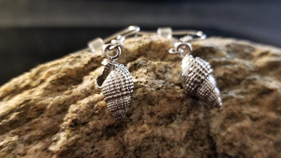 Seashell Ocean Shell Sterling Silver Earrings