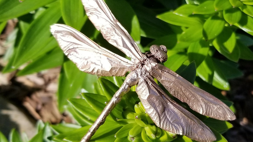 Dragonfly Bronze Lost Insect Cast Dragonfly Necklace Copper Pendant
