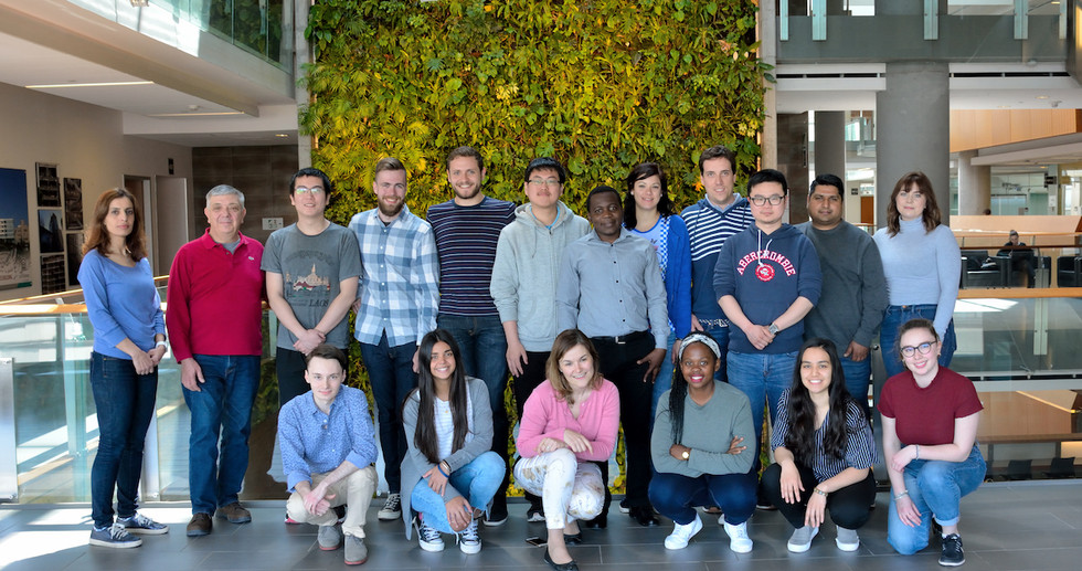 The Scaiano Group 2019